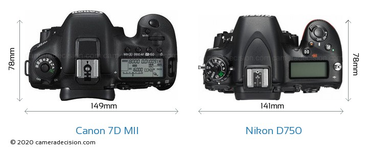 Canon 7D MII vs Nikon D750 Camera Size Comparison - Top View