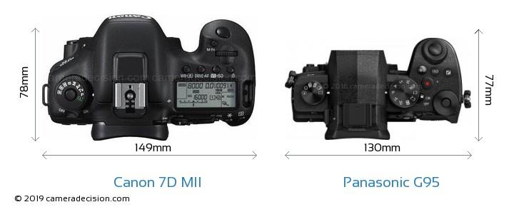 Canon 7D MII vs Panasonic G95 Camera Size Comparison - Top View