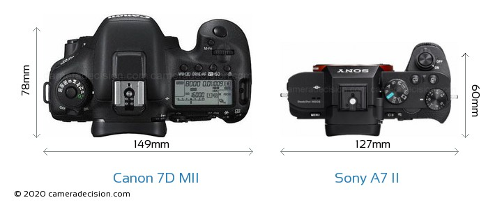 Canon 7D MII vs Sony A7 II Camera Size Comparison - Top View