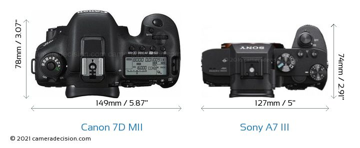 Canon 7D MII vs Sony A7 III Detailed Comparison