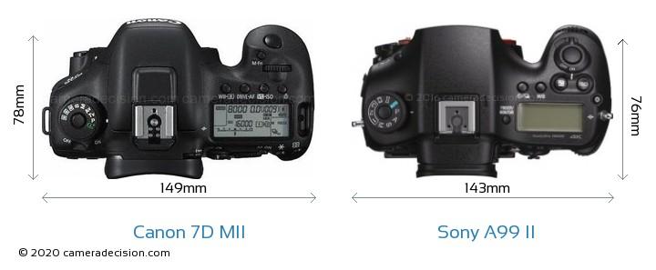 Canon 7D MII vs Sony A99 II Camera Size Comparison - Top View