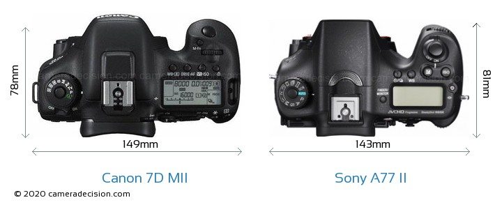 Canon 7D MII vs Sony A77 II Camera Size Comparison - Top View