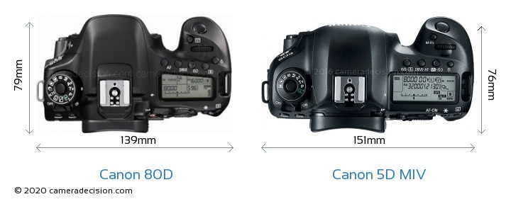 Canon 80D vs Canon 5D MIV Camera Size Comparison - Top View