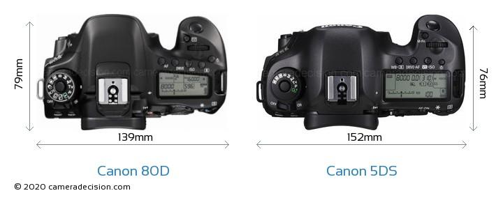 Canon 80D vs Canon 5DS Camera Size Comparison - Top View