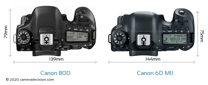 Canon 80D vs Canon 6D MII Camera Size Comparison - Top View