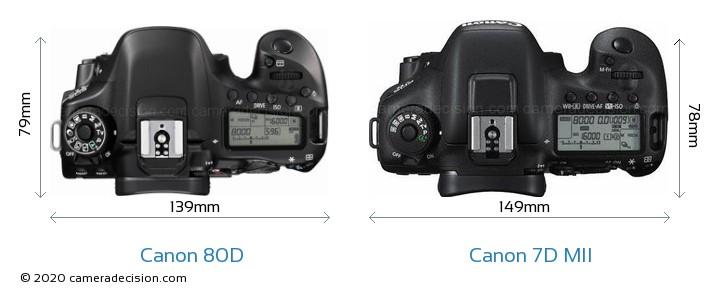 Canon 80D vs Canon 7D MII Camera Size Comparison - Top View