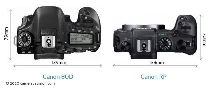 Canon 80D vs Canon RP Camera Size Comparison - Top View
