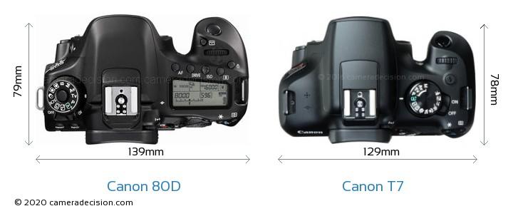 Canon 80D vs Canon T7 Camera Size Comparison - Top View