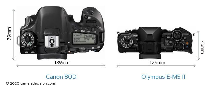 Canon 80D vs Olympus E-M5 II Camera Size Comparison - Top View