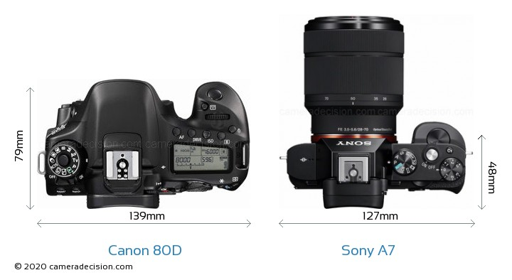 Canon 80D vs Sony A7 Camera Size Comparison - Top View