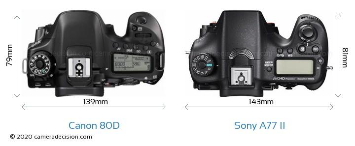 Canon 80D vs Sony A77 II Camera Size Comparison - Top View