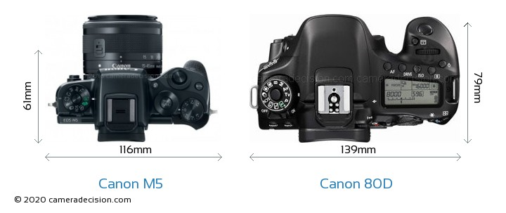 canon weakness The canon g7x ii's new digic 7 processor brings new features and performance see what's new in our canon g7x mark ii review photo news strengths and weaknesses.