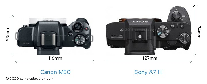 Canon M50 vs Sony A7 III Camera Size Comparison - Top View