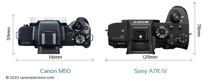 Canon M50 vs Sony A7R IV Camera Size Comparison - Top View