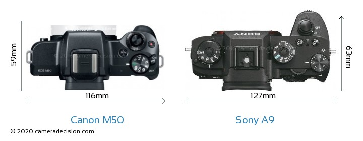 Canon M50 vs Sony A9 Camera Size Comparison - Top View