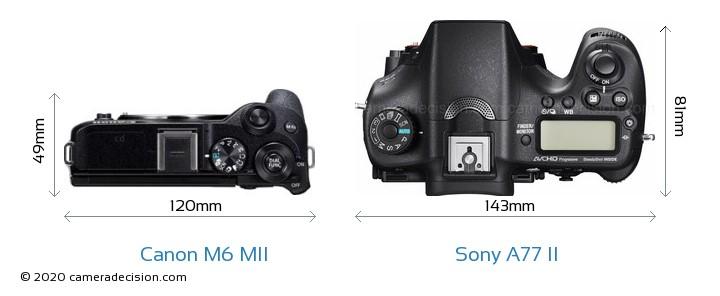 Canon M6 MII vs Sony A77 II Camera Size Comparison - Top View