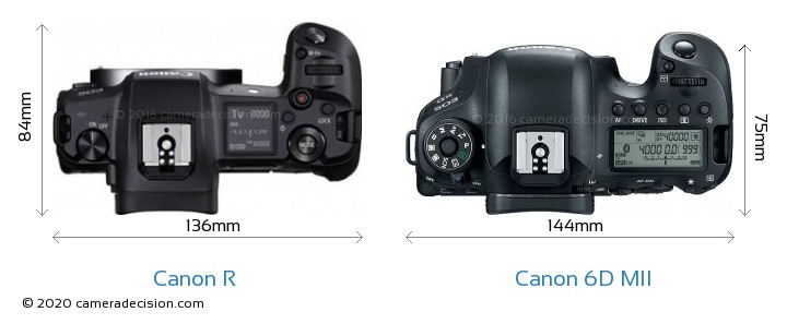 Canon R vs Canon 6D MII Detailed Comparison