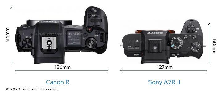 Canon R vs Sony A7R II Camera Size Comparison - Top View