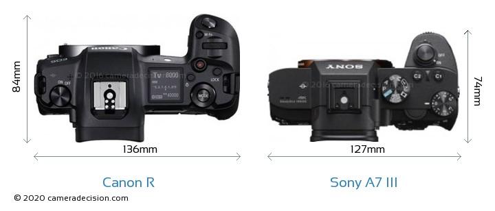Canon R vs Sony A7 III Camera Size Comparison - Top View