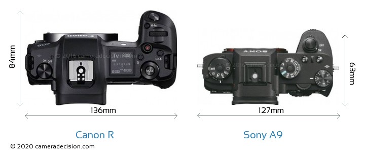 Canon R vs Sony A9 Camera Size Comparison - Top View