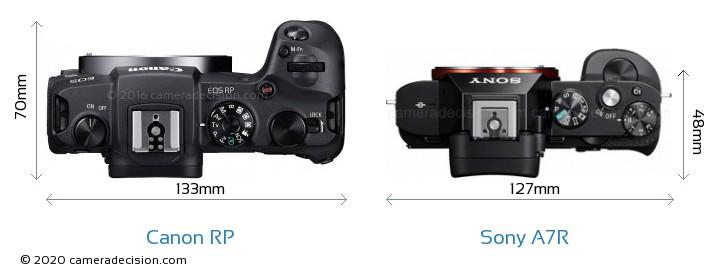 Canon RP vs Sony A7R Camera Size Comparison - Top View