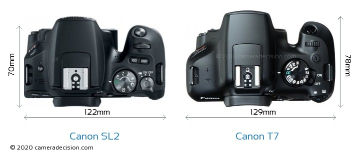 Canon SL2 vs Canon T7 Camera Size Comparison - Top View