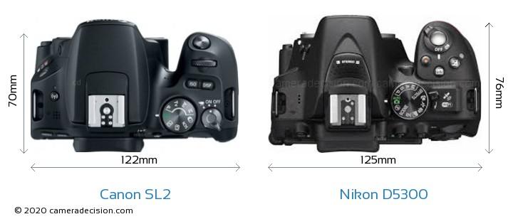 Canon SL2 vs Nikon D5300 Camera Size Comparison - Top View