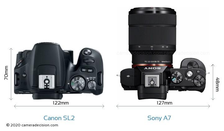 Canon SL2 vs Sony A7 Camera Size Comparison - Top View