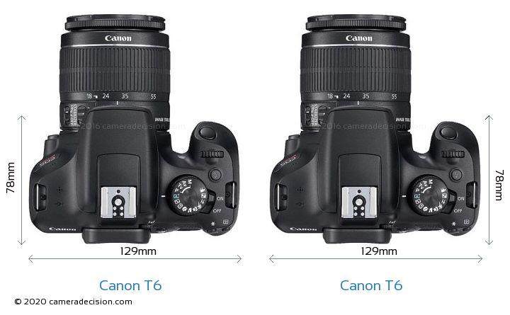 Canon T6 vs Canon T6 Camera Size Comparison - Top View
