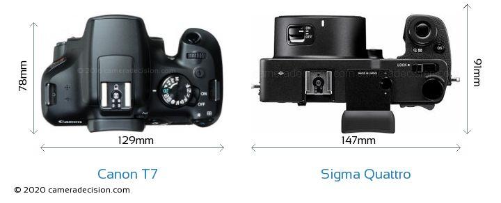 Canon T7 vs Sigma Quattro Camera Size Comparison - Top View