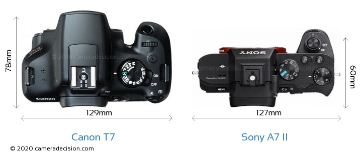 Canon T7 vs Sony A7 II Camera Size Comparison - Top View