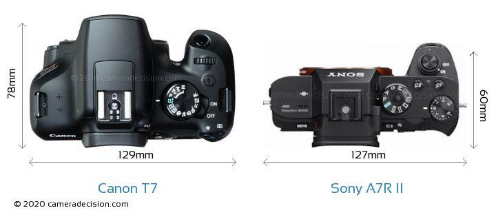 Canon T7 vs Sony A7R II Camera Size Comparison - Top View