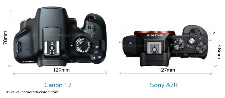 Canon T7 vs Sony A7R Camera Size Comparison - Top View