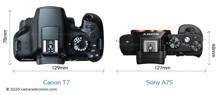 Canon T7 vs Sony A7S Camera Size Comparison - Top View