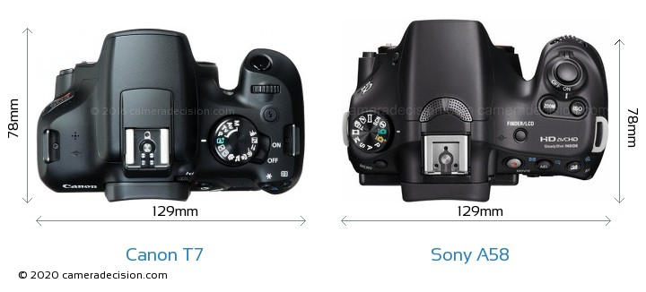 Canon T7 vs Sony A58 Camera Size Comparison - Top View