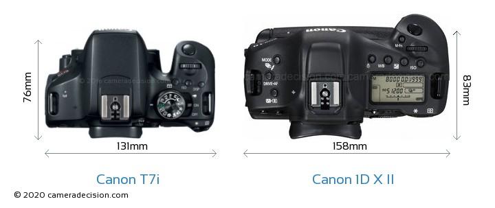 Canon T7i vs Canon 1D X II Camera Size Comparison - Top View
