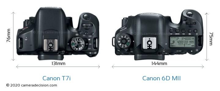 Canon T7i vs Canon 6D MII Camera Size Comparison - Top View