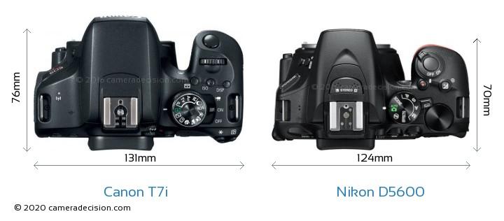 Canon T7i vs Nikon D5600 Camera Size Comparison - Top View
