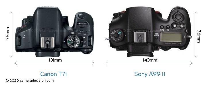 Canon T7i vs Sony A99 II Camera Size Comparison - Top View
