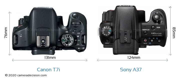 Canon T7i vs Sony A37 Camera Size Comparison - Top View