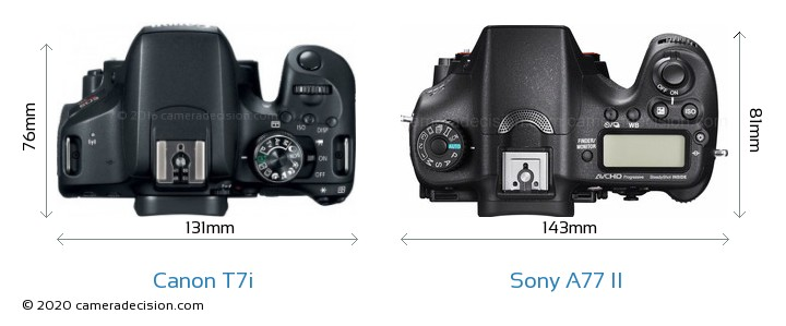 Canon T7i vs Sony A77 II Camera Size Comparison - Top View