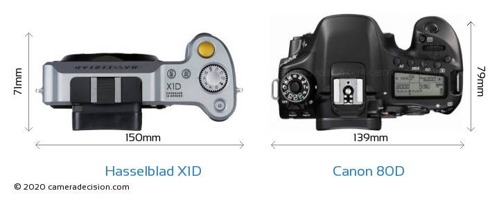 Hasselblad X1D vs Canon 80D Camera Size Comparison - Top View