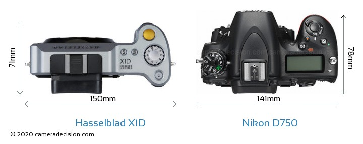 Hasselblad X1D vs Nikon D750 Camera Size Comparison - Top View