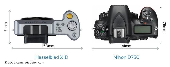 Hasselblad X1D vs Nikon D750 Camera Size Comparison - Top View