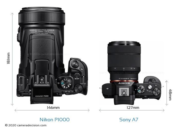 Nikon P1000 vs Sony A7 Camera Size Comparison - Top View