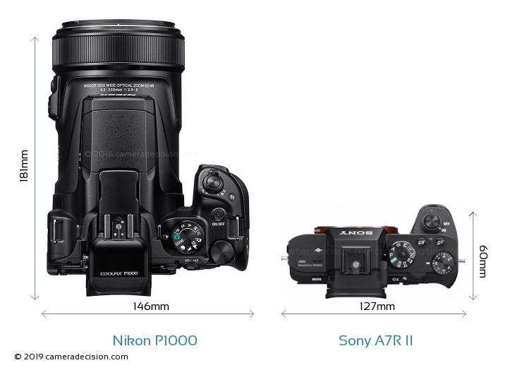 Nikon P1000 vs Sony A7R II Camera Size Comparison - Top View