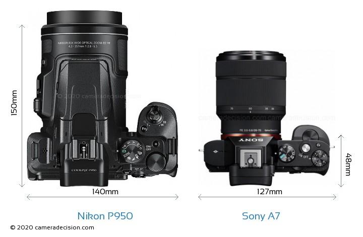 Nikon P950 vs Sony A7 Camera Size Comparison - Top View