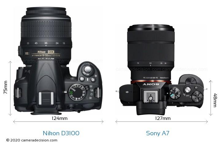 Nikon D3100 vs Sony A7 Camera Size Comparison - Top View
