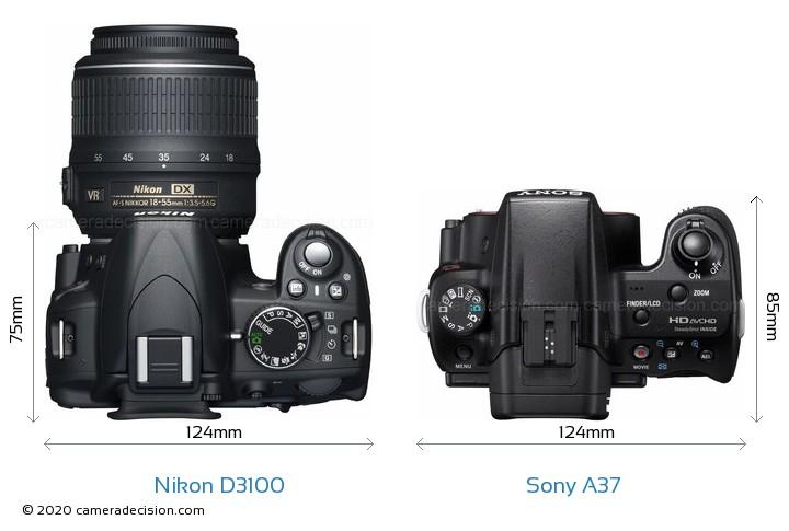 Nikon D3100 vs Sony A37 Camera Size Comparison - Top View