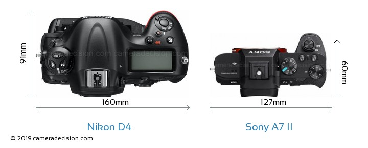 Nikon D4 vs Sony A7 II Camera Size Comparison - Top View